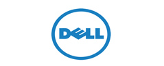 Realgiant Cooperating Clients: DELL
